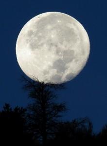 Durango Colorado Full Moon. Photo by Dan Bender